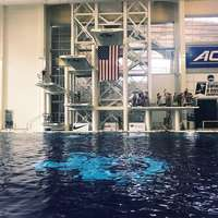 image: USA Diving Announces Win…