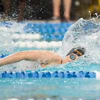 image: Women's swimming and div…
