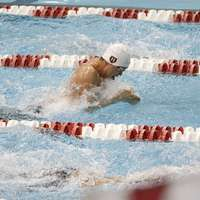 image: Men's Swimming and Divin…