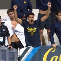 image: Cal Men's Swimming wins …