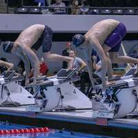 image: Eight Men's Swimmers to …
