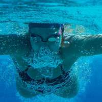 image: Swimming readies to face…