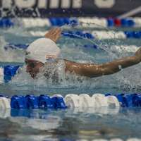 image: Tennessee Swimming and D…