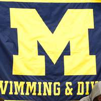 image: Michigan Swimming & Divi…
