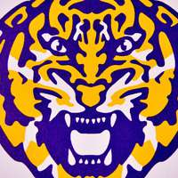 image: LSU Men's Swimming and D…