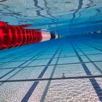 image: Myanmar Swimmer Will For…