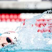 image: When To Watch Dressel, L…